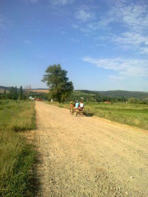 drumul dintre băbuşa şi băceşti 20 iulie 2017